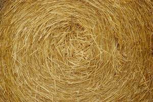 Солома как кормовое сырье