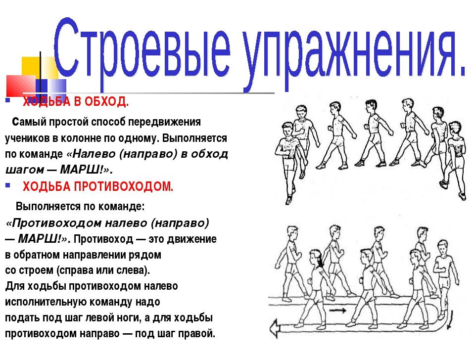 Нкт. физическая культура. (рус.) - bio-lessons
