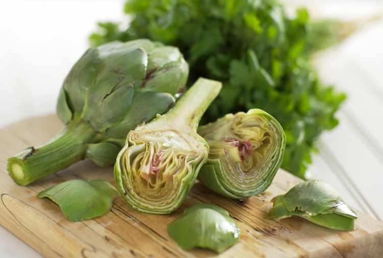 Артишок: что это за овощ и как он выглядит?