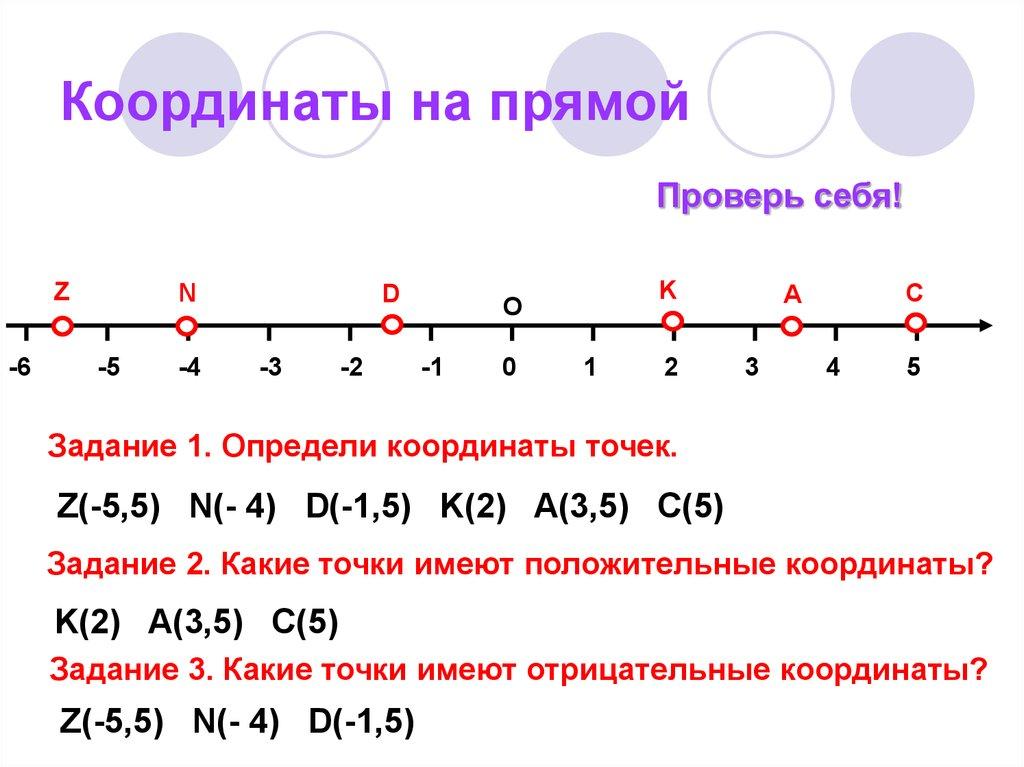 Координатная прямая (числовая прямая), координатный луч.