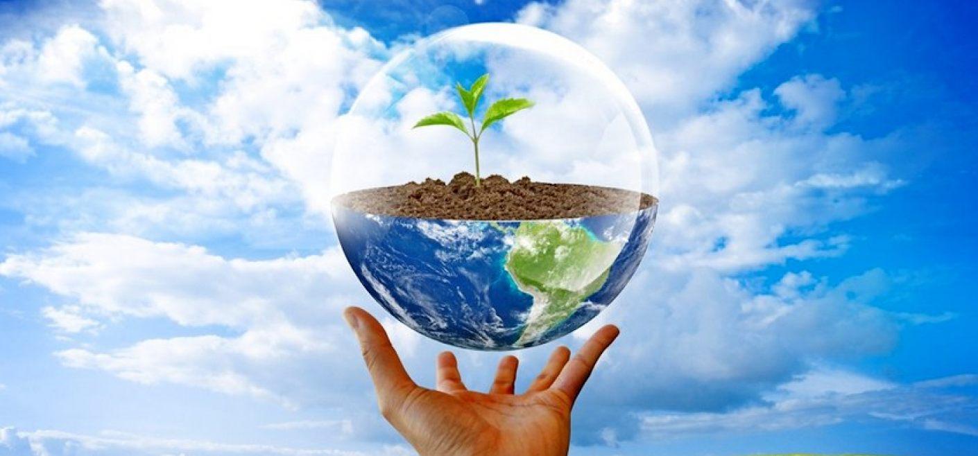 Экология: определение, история, задачи, проблемы, значение