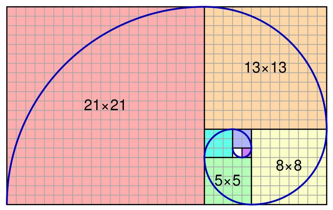Матрицы. виды матриц. основные термины.