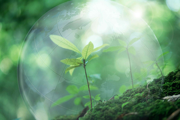 Природопользование — википедия