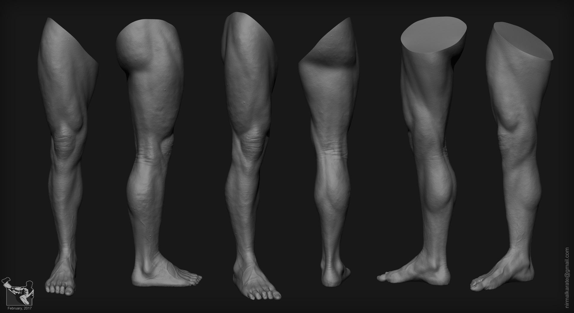 Нога что это? значение слова нога