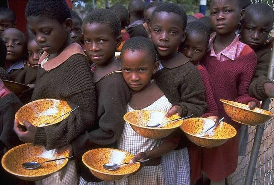Голод (фильм, 2008) — википедия. что такое голод (фильм, 2008)