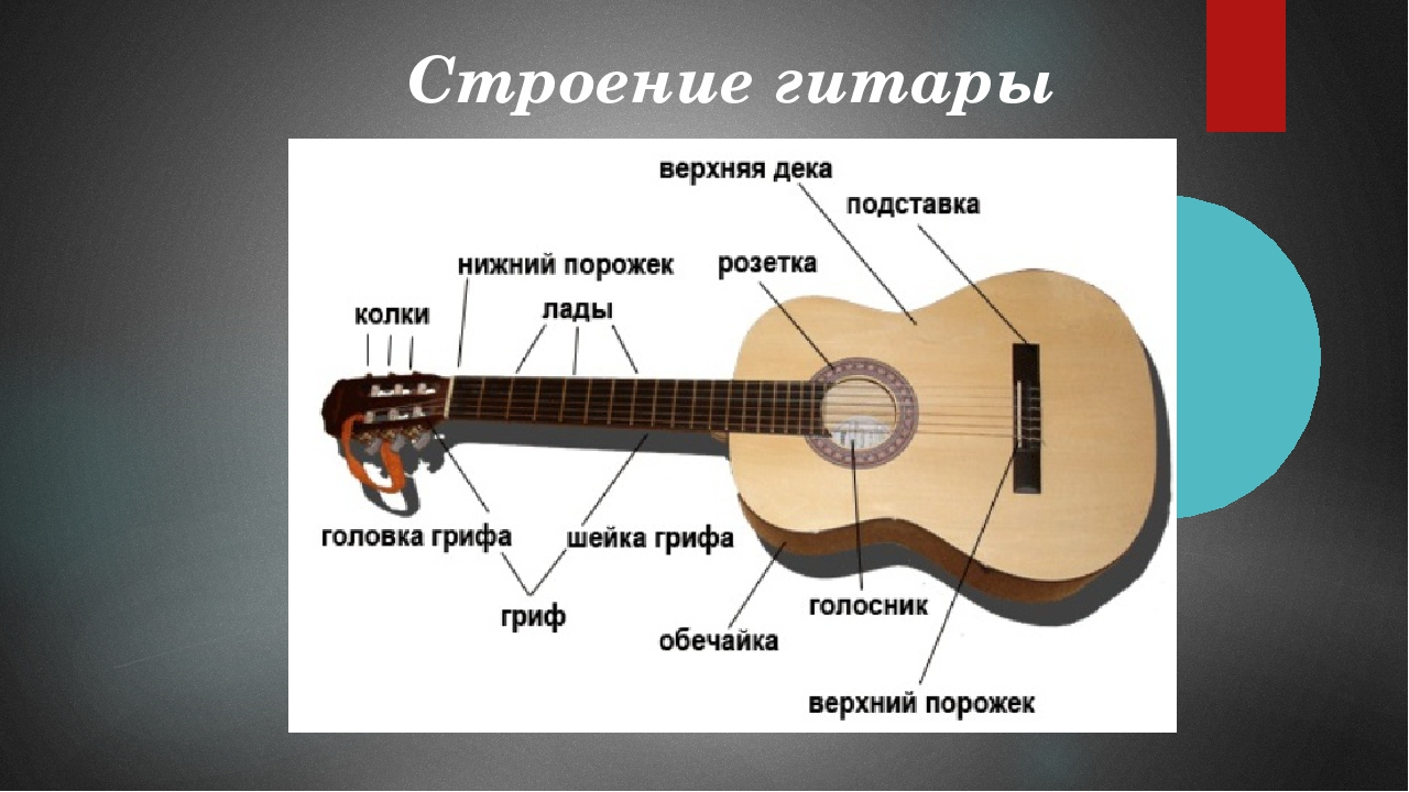 История рождения гитары. факты о которых вы не знали