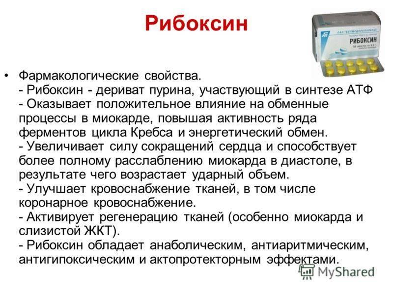 Эндокринная система — википедия. что такое эндокринная система