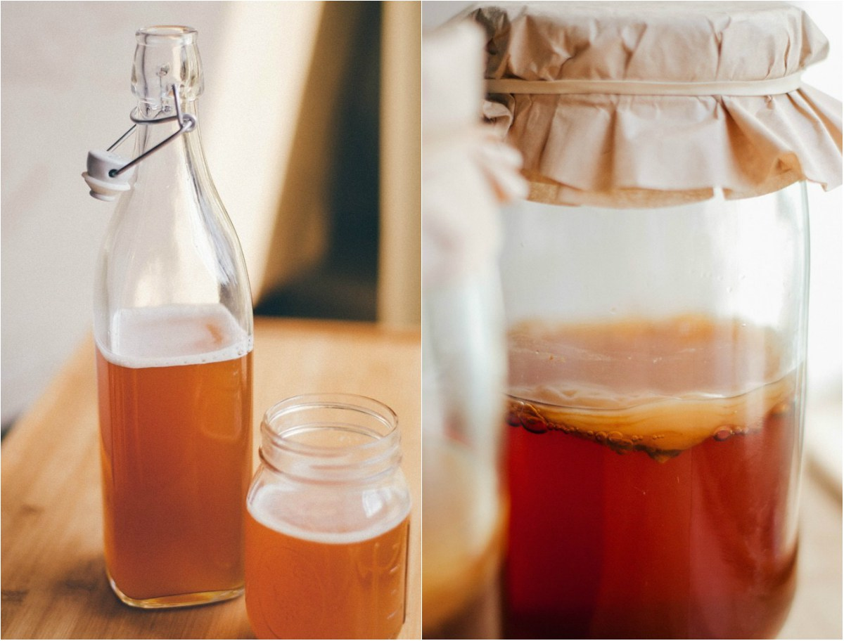 Чайный гриб (комбуча): польза и вред для здоровья | красота и здоровье