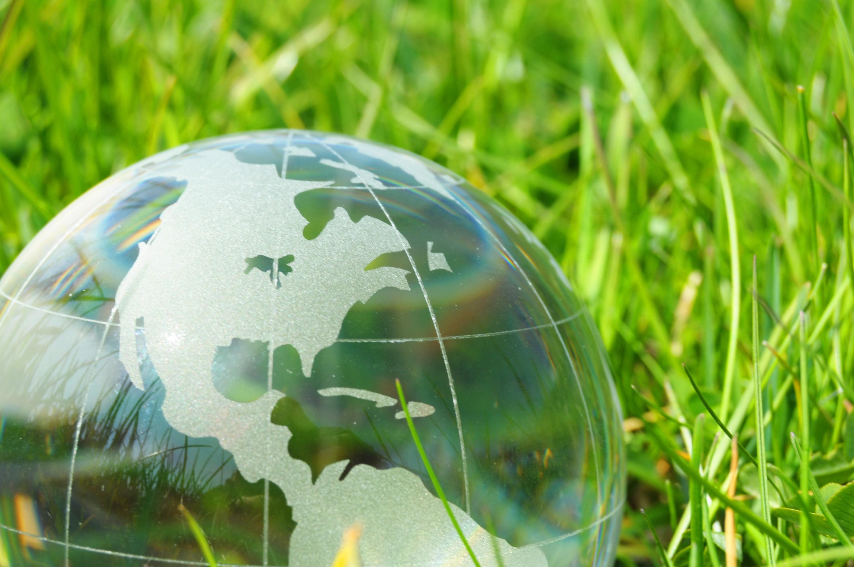 Что такое экология человека