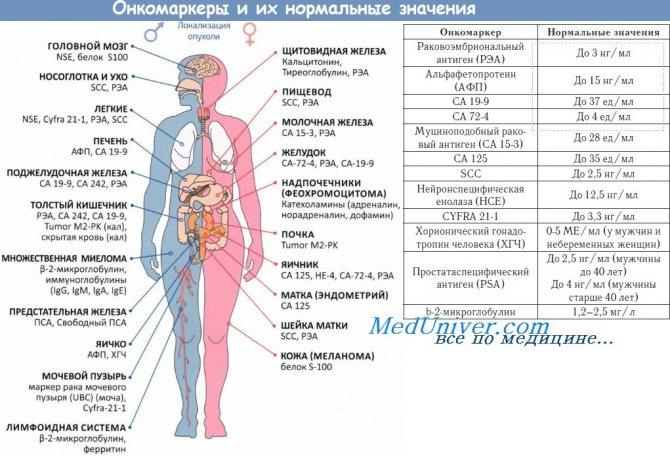 Для чего нужно сдавать анализ на онкомаркер са 125 и расшифровка его
