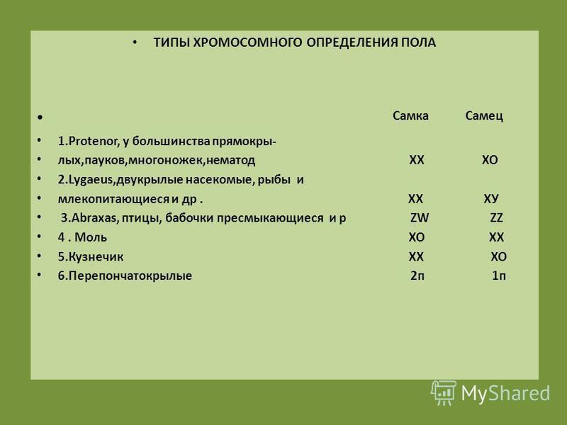 Строение и функции хромосом. размножение в органическом мире. строение половых клеток. – биология-репетитор – kaz-ekzams.ru
