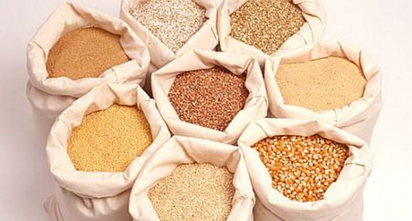 Удобрения: от питания растений и роли веществ - к классификации, выбору и применению
