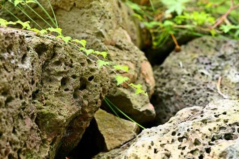 Вулканический туф: свойства и описание, применение в строительстве и скульптуре, виды, месторождения и образование породы