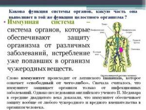 Иммунолог марк головизнин о системе иммунитета человека — реальное время