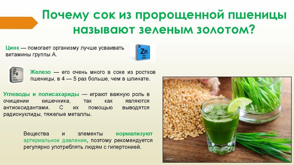 Витграсс: вся правда о соке из ростков пшеницы. польза и вред, как принимать и где купить