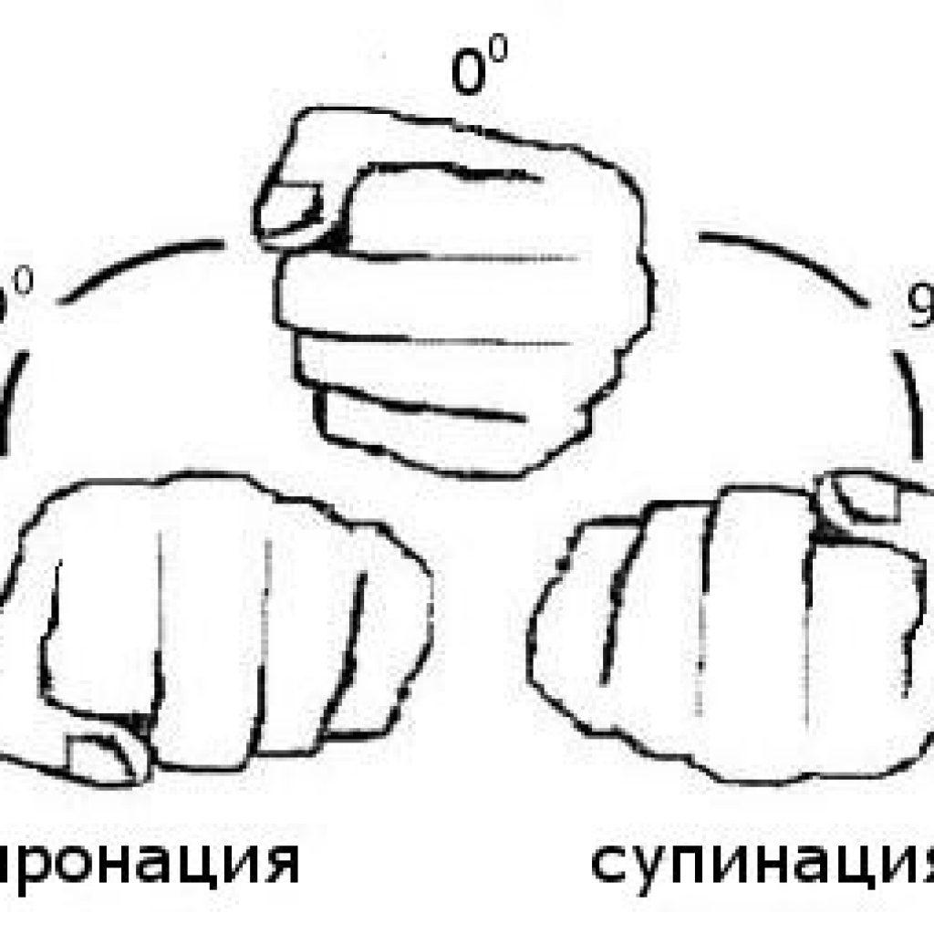 Супинация и пронация стопы: что это, отличия деформаций и особенности