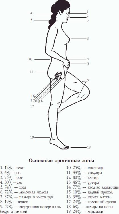 Эрогенные зоны представителей различных знаков зодиака