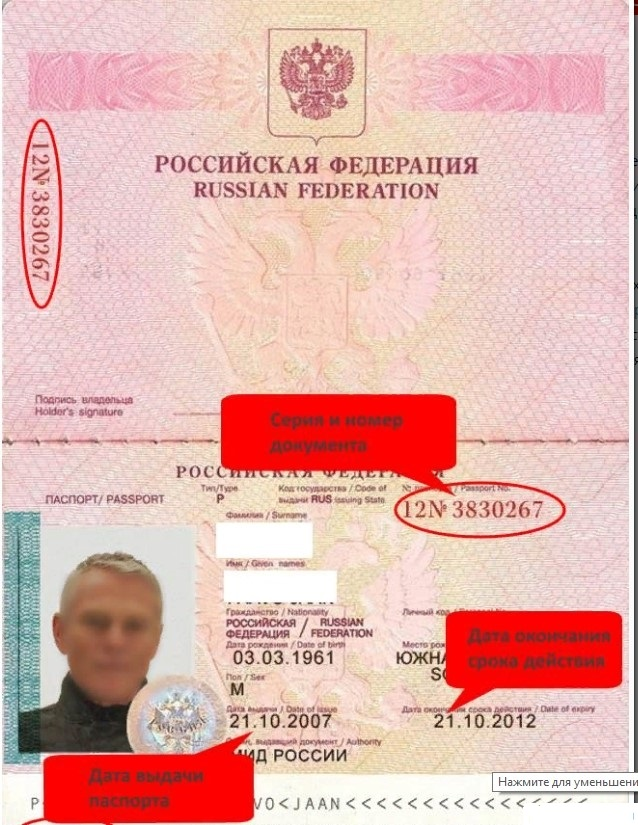 Где посмотреть номер и серию российского паспорта?