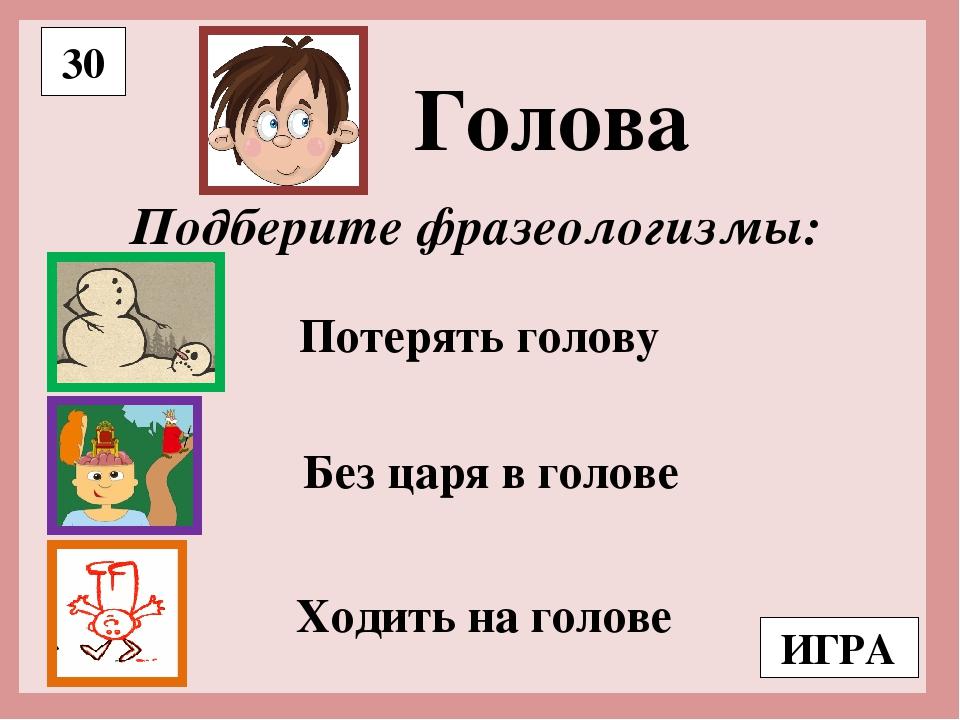 Голова — википедия. что такое голова