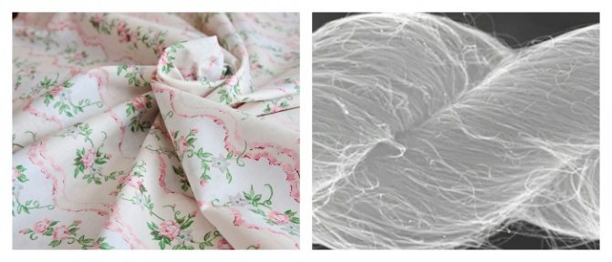 Что такое лиоцелл: состав и натуральность ткани из эвкалиптового волокна