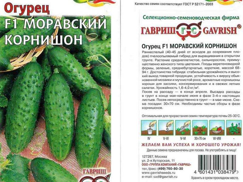 Корнишоны: описание, польза, применение в кулинарии
