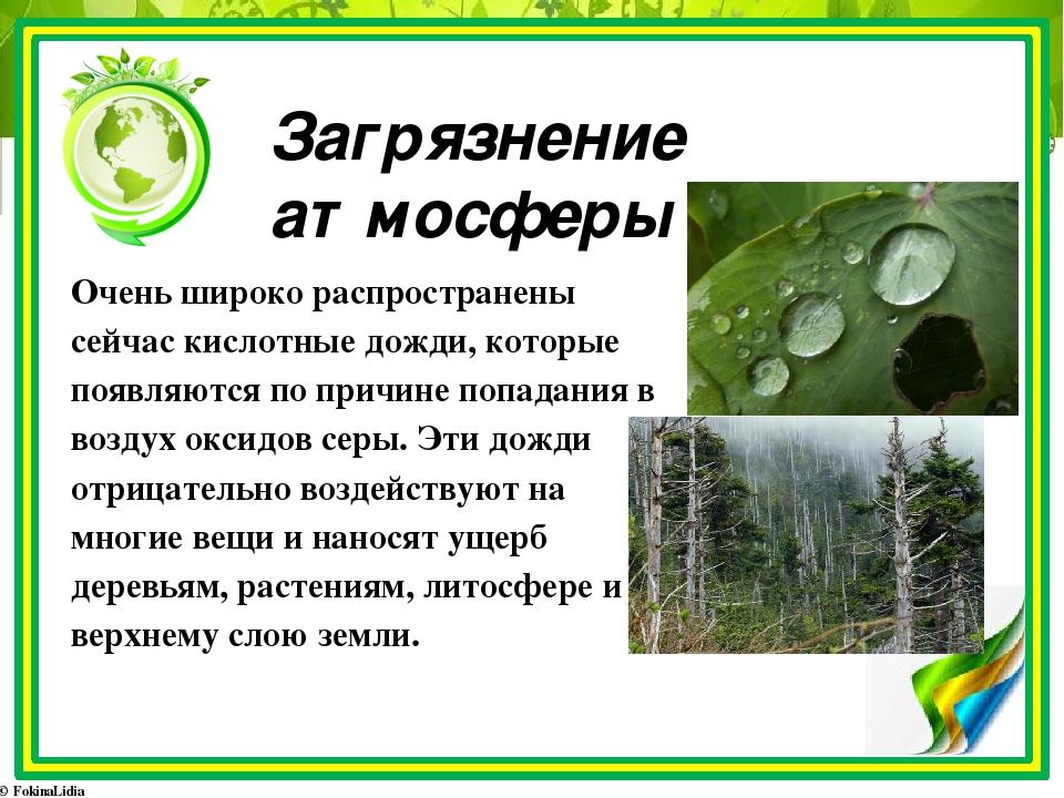 Последствия кислотных дождей: на природу, человека, строения