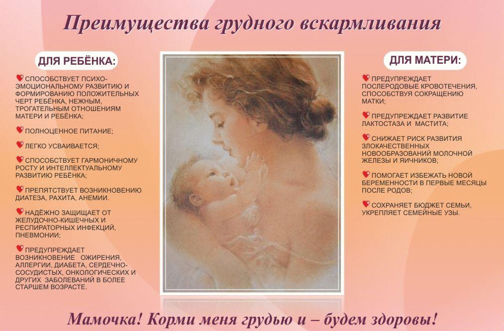 ᐉ что такое лактация у женщин. что такое лактация и чем она важна - mariya-mironova.ru