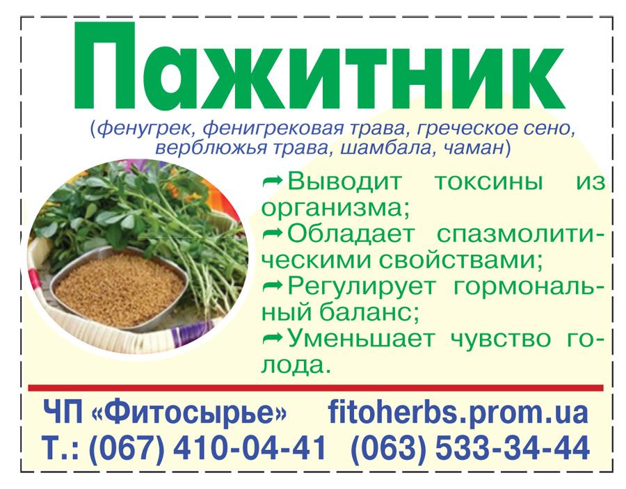 Пажитник (шамбала) что это за растение, полезные свойства и противопоказания. применение приправы в кулинарии