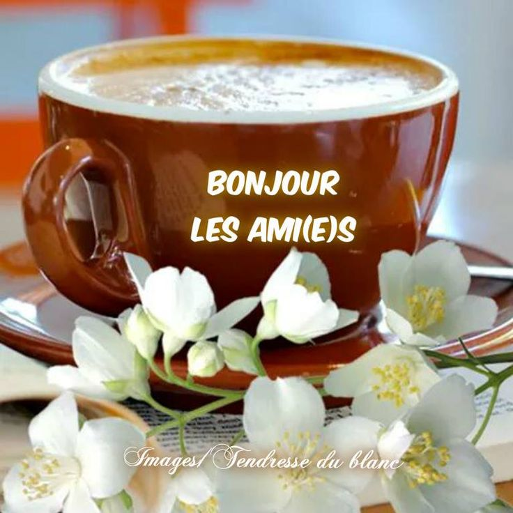 Bonjour: что это за программа и зачем она нужна