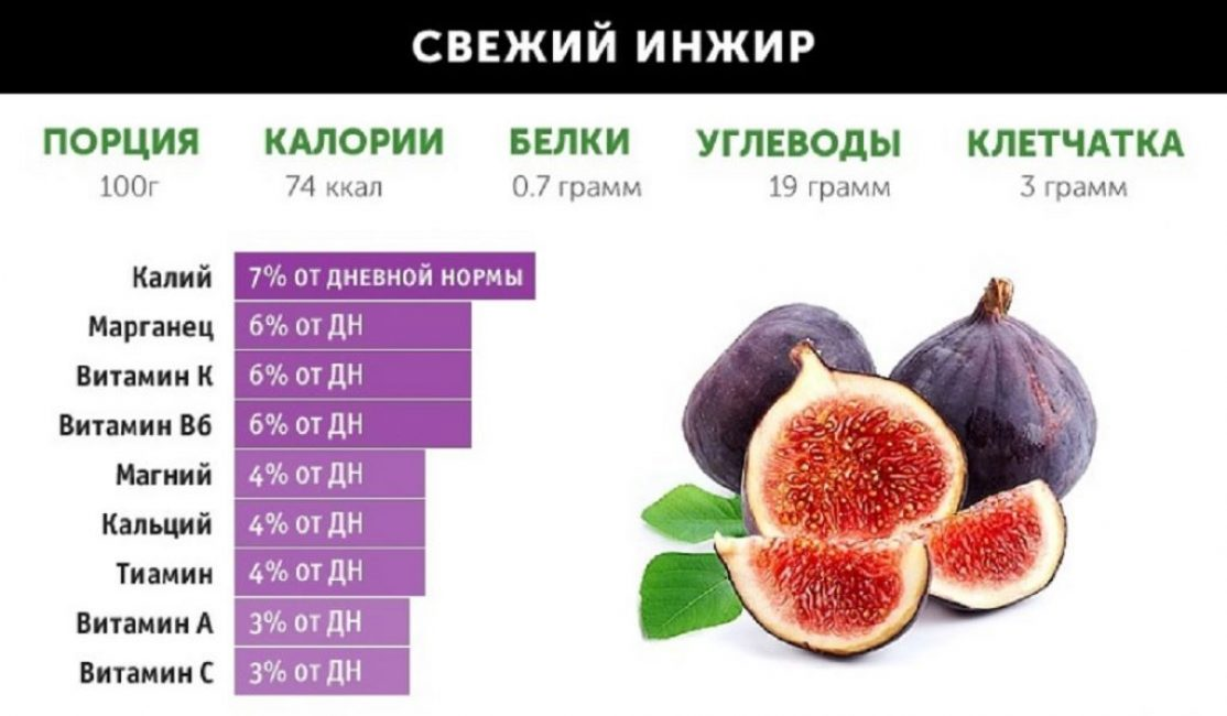 Инжир: полезные свойства и противопоказания | +отзывы