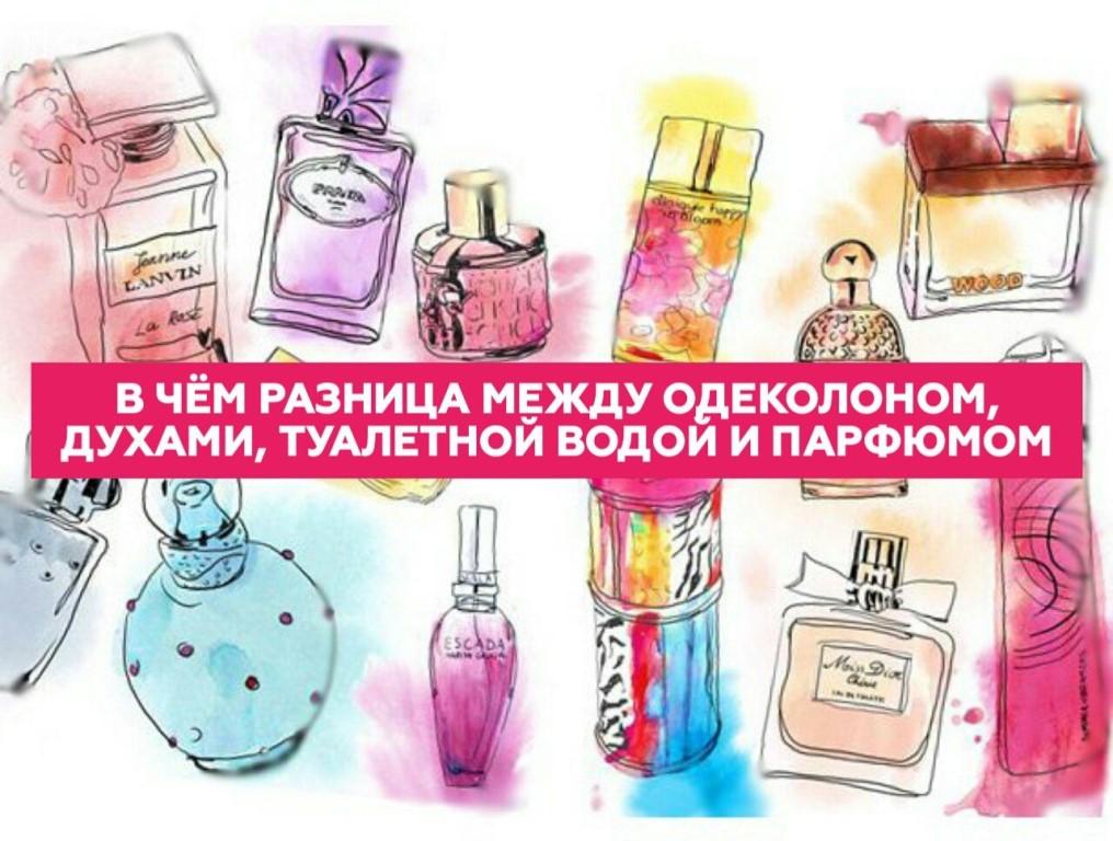 Концентрация духов: обозначение, типы парфюмерии в зависимости от концентрации