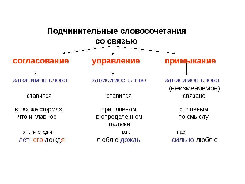 Виды словосочетаний: согласование, управление, примыкание