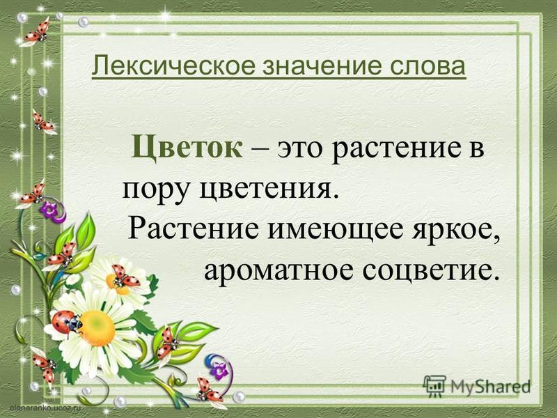Названия цветов с фотографиями | комнатные и садовые
