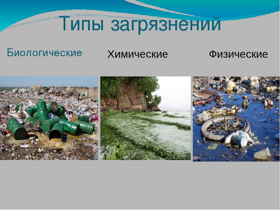 Загрязнение окружающей среды: виды, основные источники, последствия и методы решения проблемы