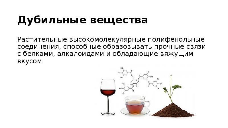 Кора дуба. лечебные свойства коры дуба