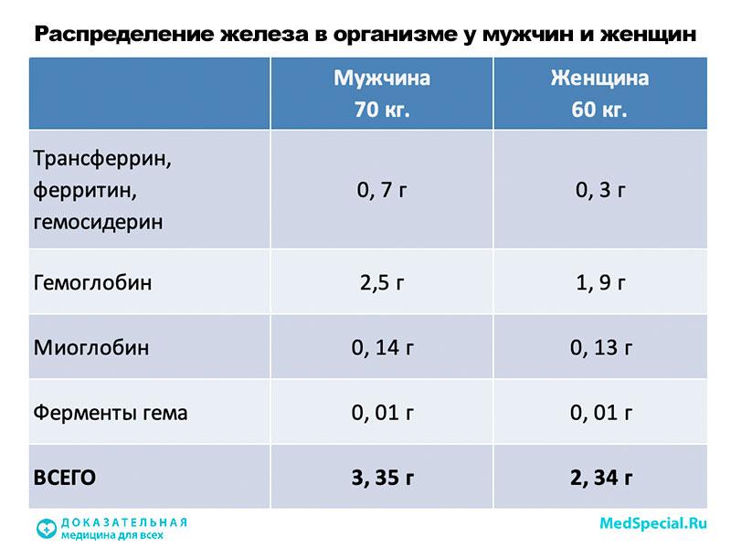 Сывороточное железо в крови: норма по возрастам, ниже, выше нормы