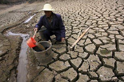 Что это - опустынивание? причины опустынивания. где происходит опустынивание?