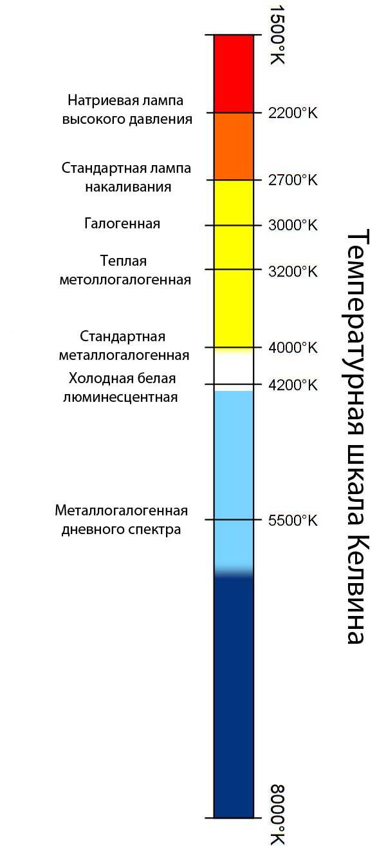Что такое шкала апгар: описание, критерии, расшифровка баллов