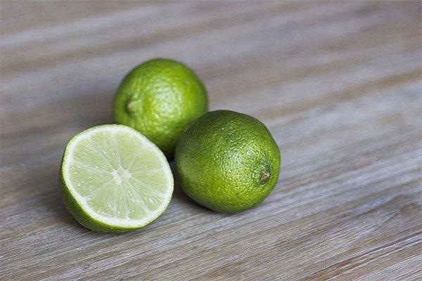 Цитрон — описание фрукта, польза и вред, калорийность, состав. как выбирать и хранить цитрон, применение в кулинарии