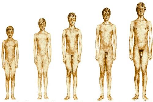 Переходный возраст у мальчиков: симптомы, когда начинается и как проходит