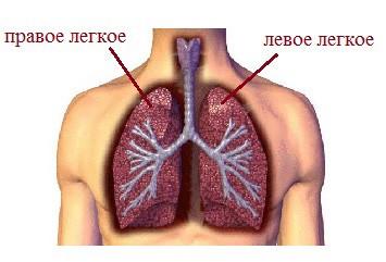 6 самых распространенных заболеваний легких