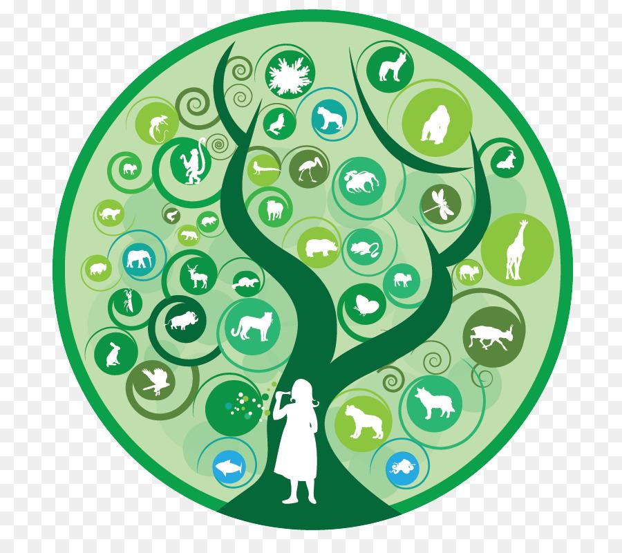 Многообразие живых организмов. систематика - учительpro