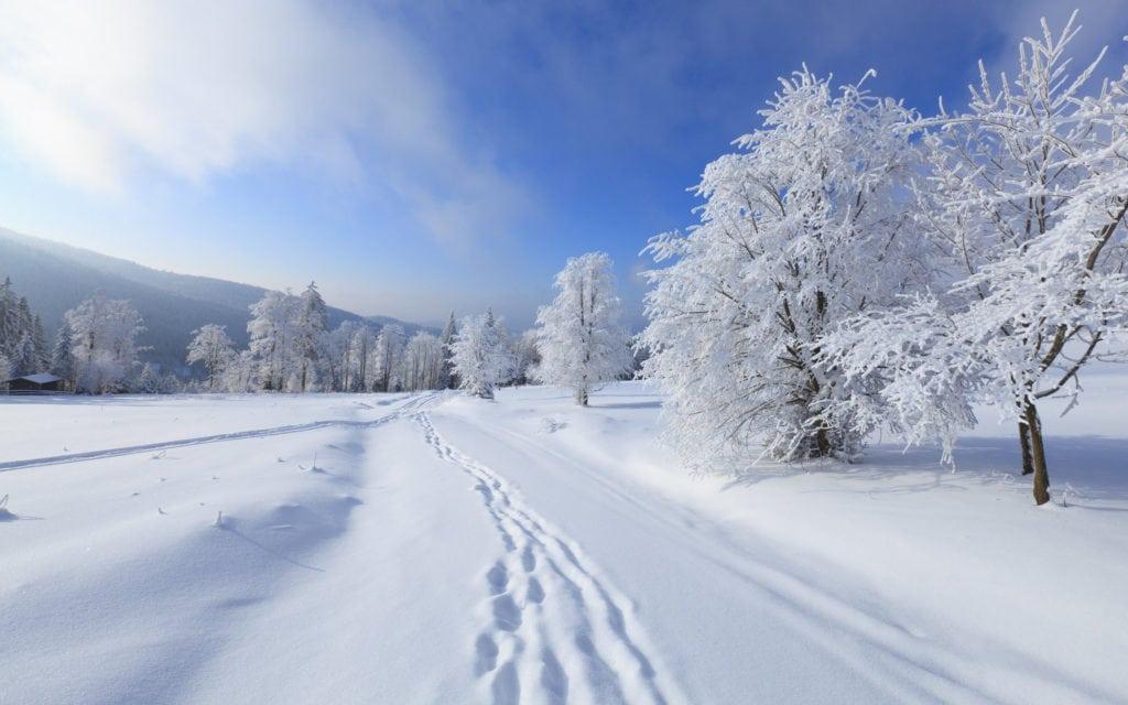 Интересные факты о снеге, фото и видео  - «как и почему»