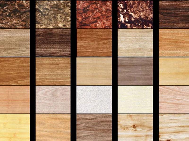 Строение древесины: особенности, элементы, химический состав