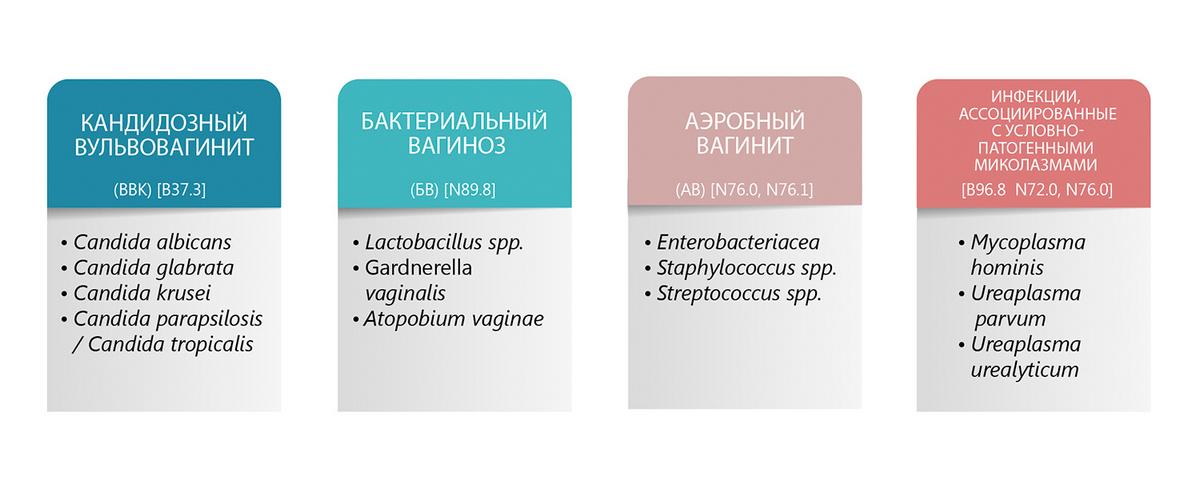 Анализ на флороценоз - что это такое? расшифровка, норма, отклонения :: syl.ru