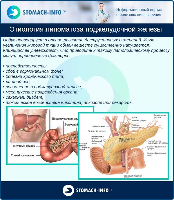 Диффузные изменения поджелудочной железы – норма или патология?
