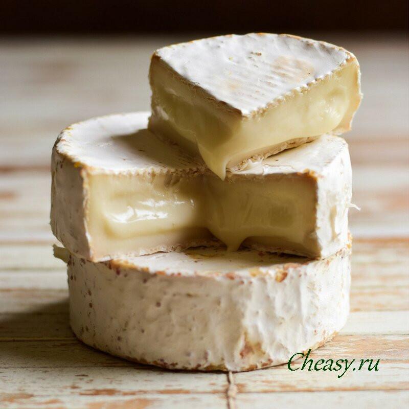 Сыр «камамбер»: история возникновения, польза и вред, особенности приготовления и употребления