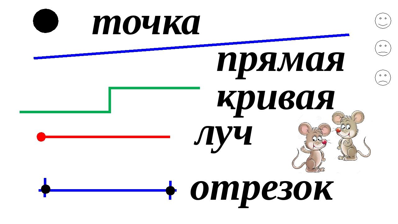 Что это - прямая и какой она бывает?