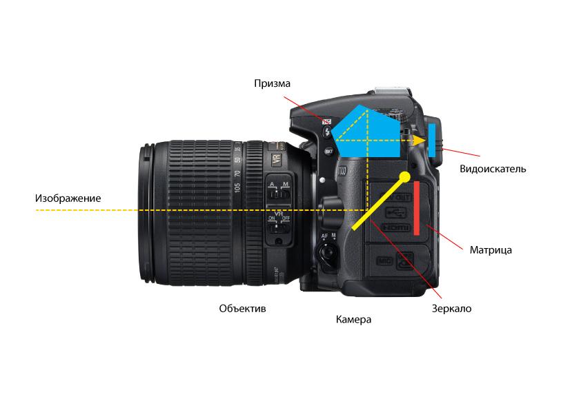 Цифровые фотоаппараты (47 фото): что это такое? зеркальные и другие фотокамеры. когда появились первые камеры? как выбрать профессиональный фотоаппарат?