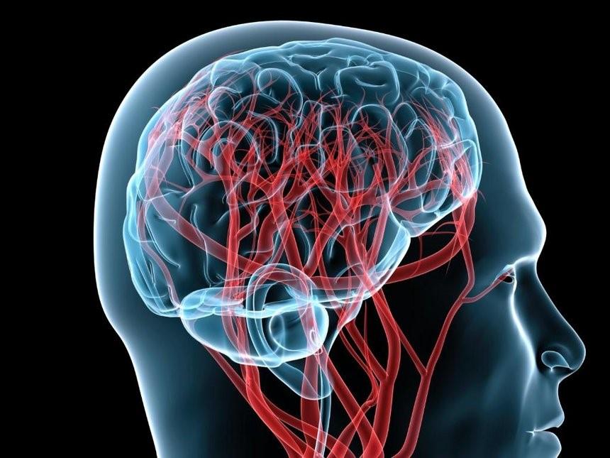 Диагностика и лечение цереброваскулярной болезни